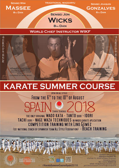karate course 2017 in cantabria